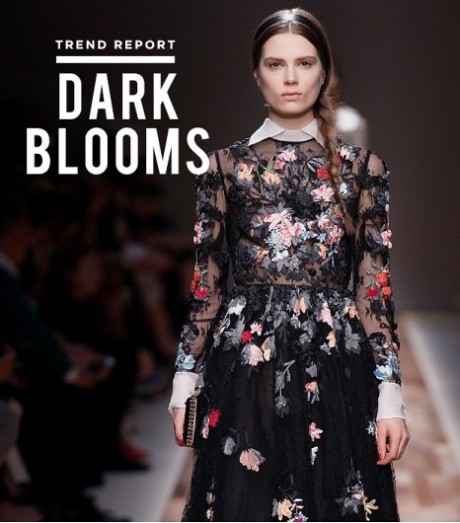 darkblooms